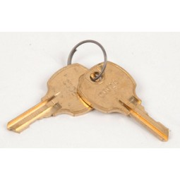 Hoshizaki key (2 ea on ring)
