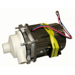 Hoshizaki pump assembly