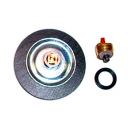 Regulator repair kit: 77003C 77006T 44017Q 5000 series