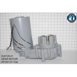 Hoshizaki gear motor