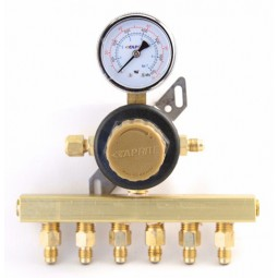"Secondary soda regulator, 1P6P, 1/4"" flare In/thru, 1/4"" flare outlets on horizontal manifold, 100 lb gauge"