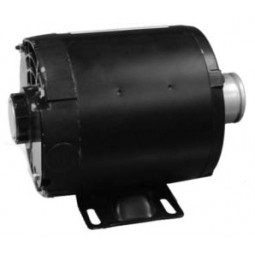 Motor, carb, 1/3 HP 220V 50HZ